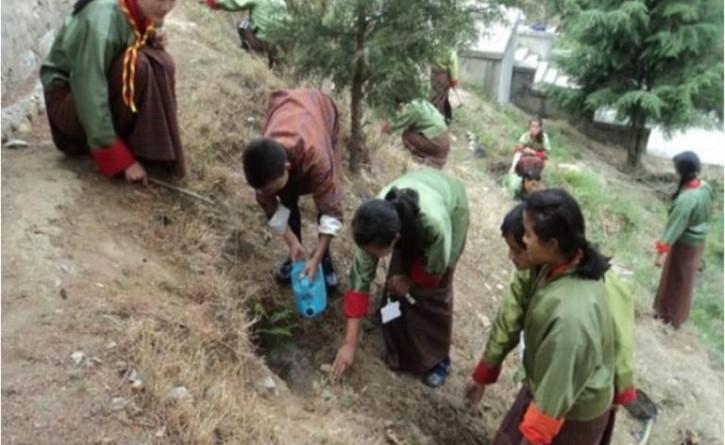 bhutan tree plantation marathipizza 00