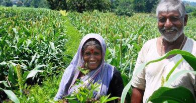 farmers-marathipizza