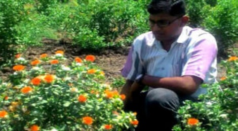 sandesh patil kesar farming featured