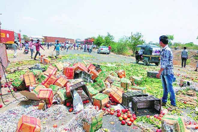 farmer-strike-marathipizza