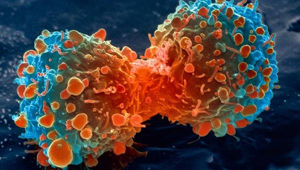 chemotherapy-inmarathi02