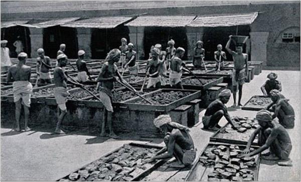 opium-inmarathi