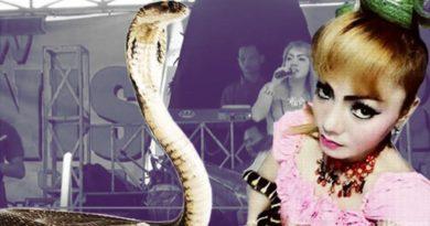 cobra-bites-singer-marathipizza00