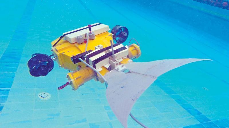 underwater robot marathipizza