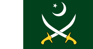 pakistan flag marathipizza