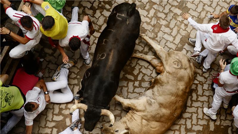 bull-running-festival-marathipizza04