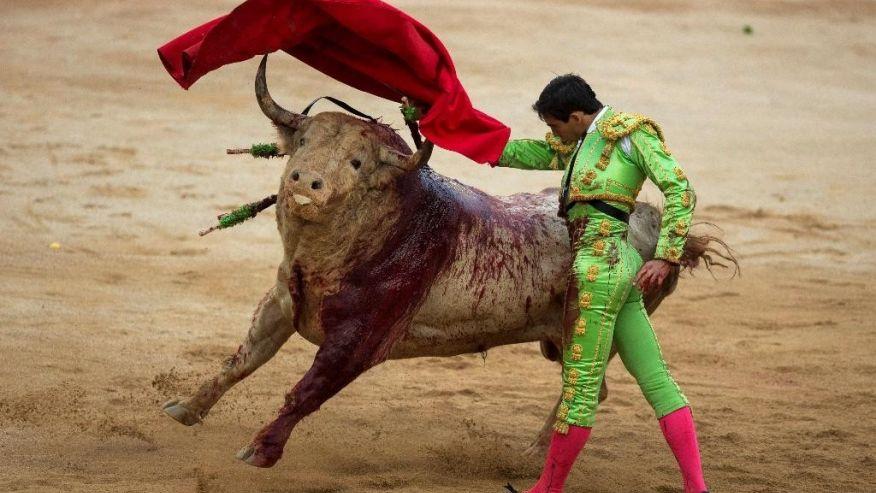 bull-running-festival-marathipizza06