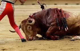 bull-running-festival-marathipizza07