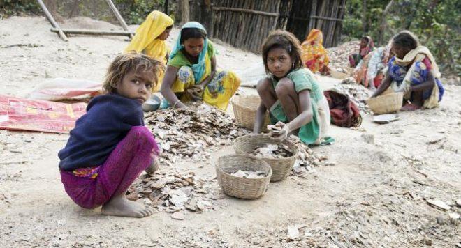 Child labour Inmarathi