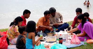 indian-picnic-marathipizza