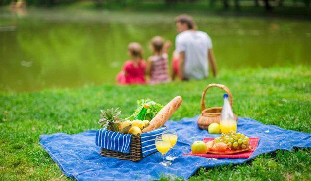 picnic basket inmarathi