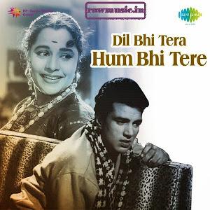Dil Bhi Tera Hum Bhi Tere-marathipizza