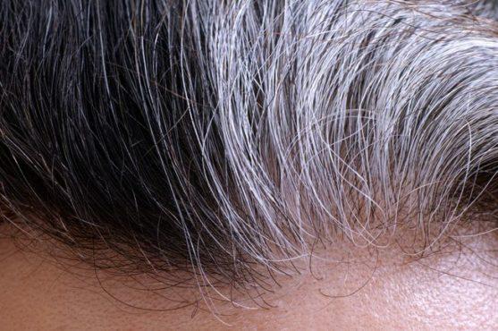 gray-hair 1 InMarathi