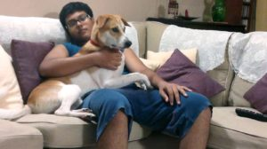 indian-pet-lover-marathipizza01