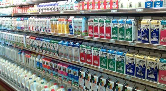 milk-marathipizza06jpg