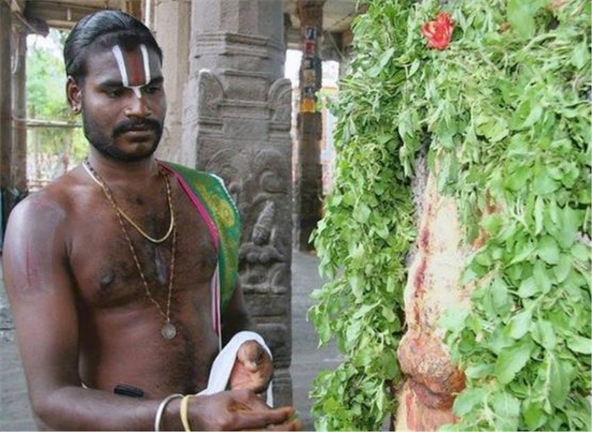 temple-marathipizza03