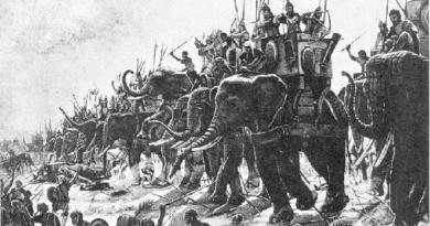 warriors inmarathi