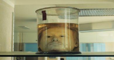 head inmarathi