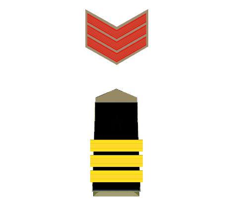 police-insignia-maratipizza19
