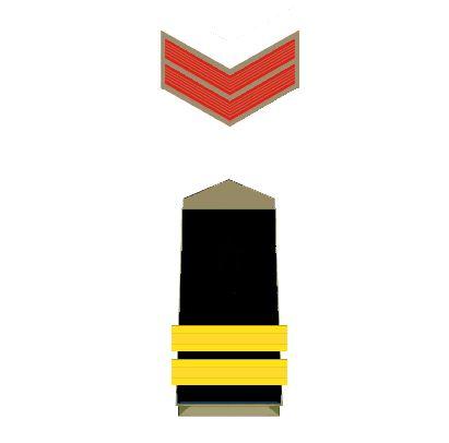 police-insignia-maratipizza20