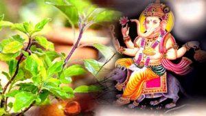 Tulsi love Ganesh.marathipizza