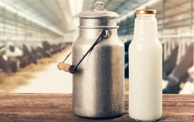 buffalo-milk InMarathi