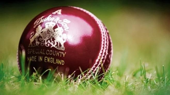 cricket ball inmarathi