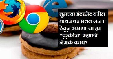 internet cookies inmarathi