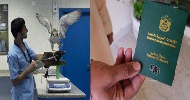 saudi-arabia-falcon-hospital 7 InMarathi