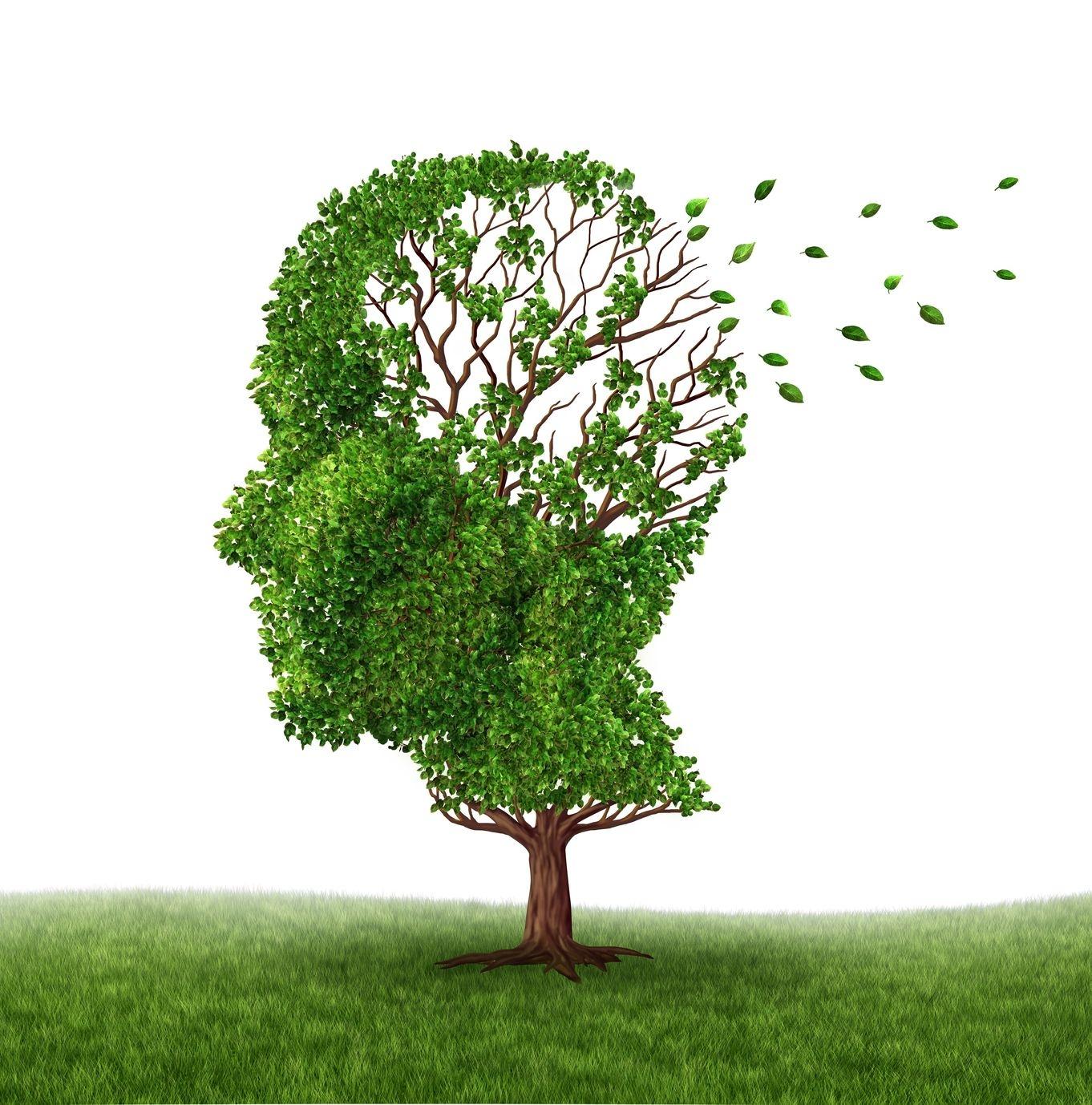Brain-Tree-marathipizza01