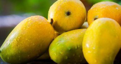 mango-inmarathi