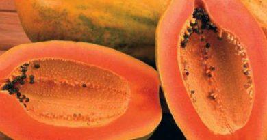 papaya Inmarathi