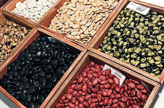 seeds inmarathi