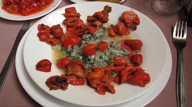 Pyura Chilensis02-marathipizza