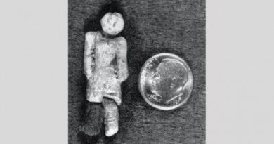 stone doll inmarathi