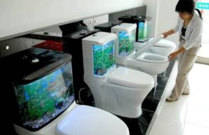 Toilet story InMarathi 4