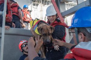 Two-womens-rescue.Inmarathi2