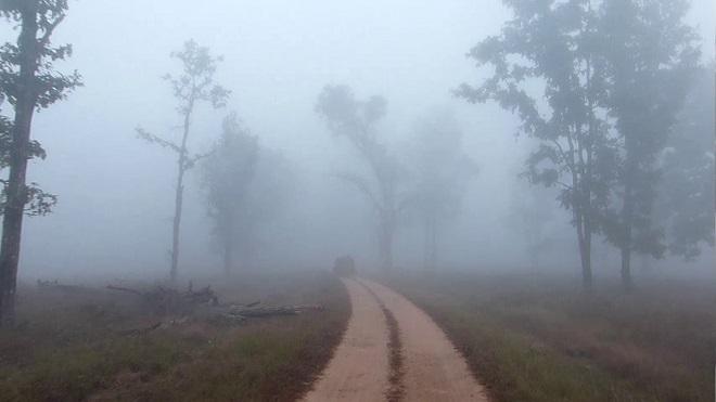 kanha-national-park-4 InMarathi