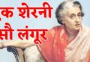 बिडी में तंबाकू है, कॉंग्रेस वाला डाकू है : भारतीय निवडणुकांतील काही मजेशीर नारे