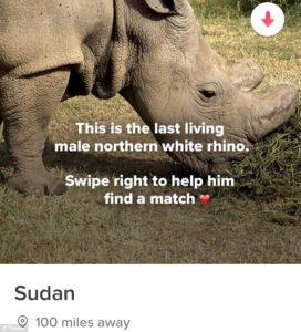 sudan-inmarathi01