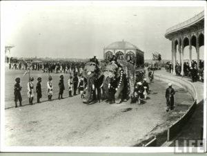 Delhi darbar of 1903.Inmarathi11