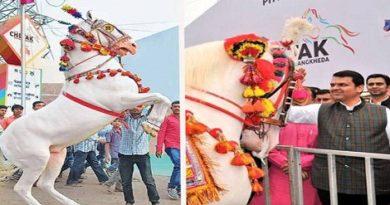 Sarangkheda horse festival.Inmarathi00