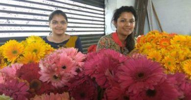 hariyana girls-inmarathi
