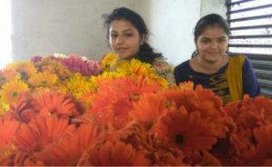 hariyana girls-inmarathi05