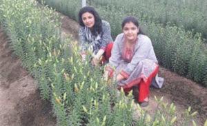 hariyana girls-inmarathi08