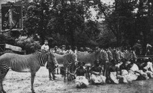 human-zoo-inmarathi05