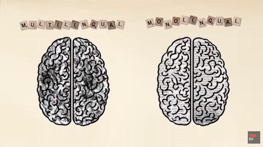 Bilingual-Brain-inamarathi