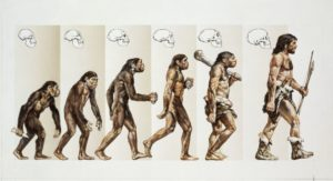 humanevolution-inmarathi