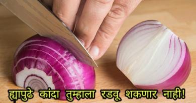 onion inmarathi