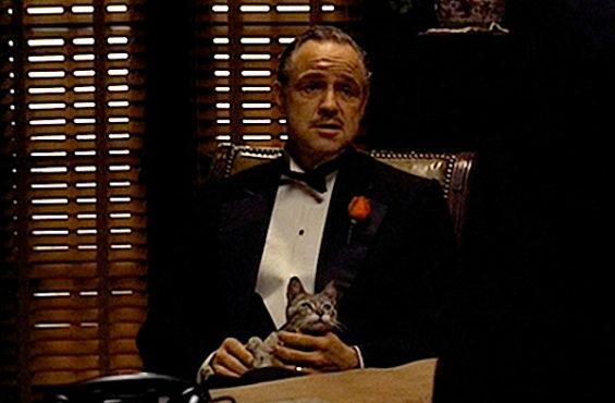 The Godfather.Inmarathi2
